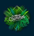 hello summer with typography letter vector image vector image