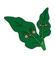 kawaii leaves plant natural foliage garden cartoon vector image vector image