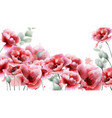 poppy pink flowers background watercolor summer vector image vector image