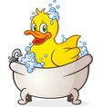 rubber duck bubble bath cartoon character vector image