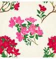 seamless texture red rhododendron branch vector image vector image