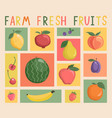set vintage cards with fruits and berries vector image