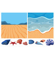 two ocean scenes with many seashells vector image vector image