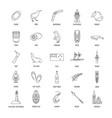 new zealand icons set vector image