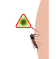 mosquito on human skin vector image