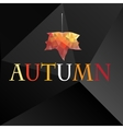 Autumn background with maple leaf vector image