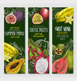 banners set of exotic tropical fresh fruits vector image vector image