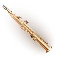 Classical soprano sax vector image vector image