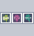 collection three graphic t-shirt designs vector image vector image