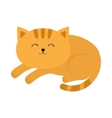 Cute lying sleeping orange cat with moustache vector image
