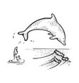 dolphin jumping sketch engraving vector image