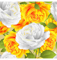 seamless texture flower yellow and white roses vector image vector image