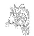 tiger doodle coloring book page dlsck and white vector image vector image