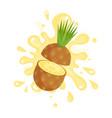 sliced ripe pineapple juice splashing colorful vector image vector image