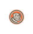 Bulldog Dog Mongrel Head Mascot Circle vector image vector image
