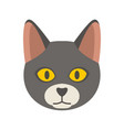 cat head icon flat style vector image vector image