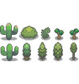 set of trees in pixel style vector image vector image