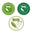Bio labels with green leaves vector image