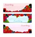 Berries banners set horizontal vector image vector image