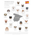 dogs by country of origin spanish dog breeds vector image vector image