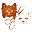 grooming dogs and cats vector image vector image