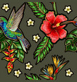 seamless pattern with humming bird hibiscus vector image vector image