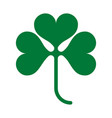 three leaves clover vector image