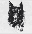 watercolor drawing black angry looking wolf vector image