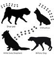 dogs silhouette 3 vector image