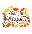 modern brush phrase hello autumn vector image