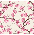 Cherry blossom seamless flowers pattern vector image