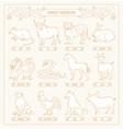 chinese horoscope of twelve animals line vector image