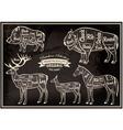 diagram cut carcasses of boar bison deer horse vector image vector image