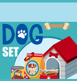 different accessories for dog vector image vector image