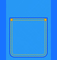 hip pocket vector image