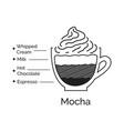 infographic mocha coffee recipe vector image