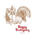 thanksgiving holiday turkey symbol sketch element vector image vector image