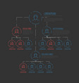 company hierarchy diagram template vector image vector image