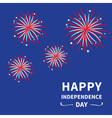 Fireworks dark sky Happy Independence Day vector image