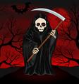 Grim Reaper for Halloween vector image