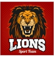 Lions - sport team logo template Lion head on the vector image vector image