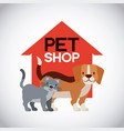pet and veterinary vector image