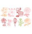 set wedding botanical flowers in garden or vector image vector image