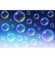 Transparent Multicolored Soap Bubbles background vector image vector image
