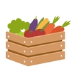 Vegetable box vector image vector image