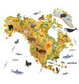 north america flora and fauna map flat elements vector image