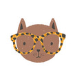adorable face or head cat wearing glasses vector image vector image