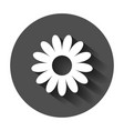 chamomile flower icon in flat style daisy with vector image vector image