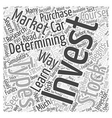 Determining Where You Will Invest Word Cloud vector image vector image
