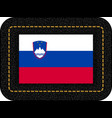 flag of slovenia icon on black leather backdrop vector image vector image